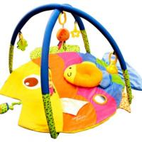Simple Dimple: Colourful Fish Activity Playgym