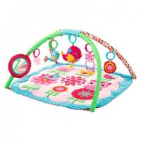 Bright Starts:Bloomin' Birdies Activity Gym